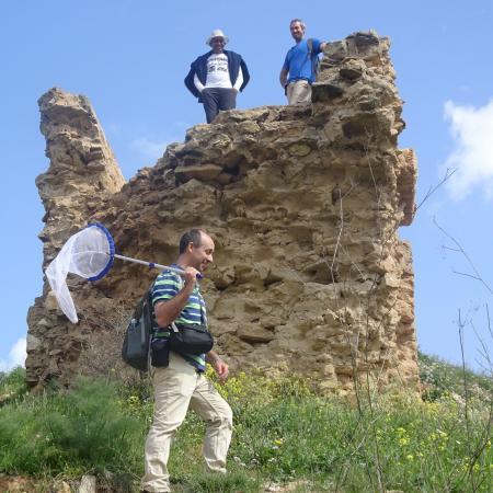 Hagai, Muki and Atul above